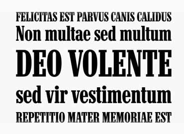 Neo Contact Marlboro Font Family