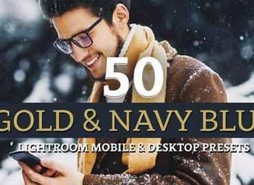 50 Gold & Navy Lightroom Presets