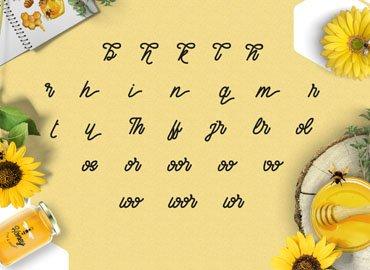 Fontbundles Honey Bee Font