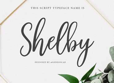 Shelby Font Free Download