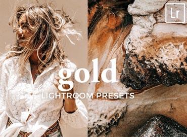 4 Lightroom Presets GOLD
