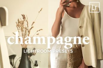 4 Lightroom Presets CHAMPAGNE