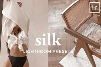 4 Lightroom Presets SILK