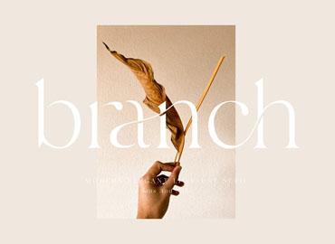 Branch Elegant Ligature Font