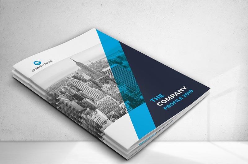 Business Brochure - Company Profile