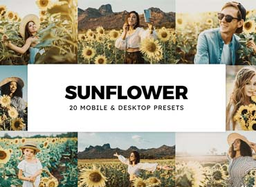 20 Sunflower Lightroom Presets & LUTs