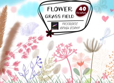 FLOWER GRASS FIELD Procreate Brush Stamp