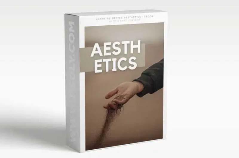 Drake Vincent Building A Better Aesthetic Ebook + Presets