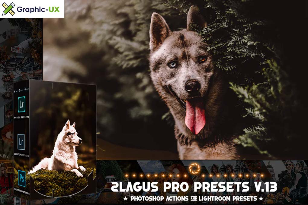 PRO Presets V 13 Photoshop & Lightroom